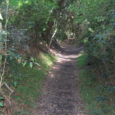 Chemins-creux