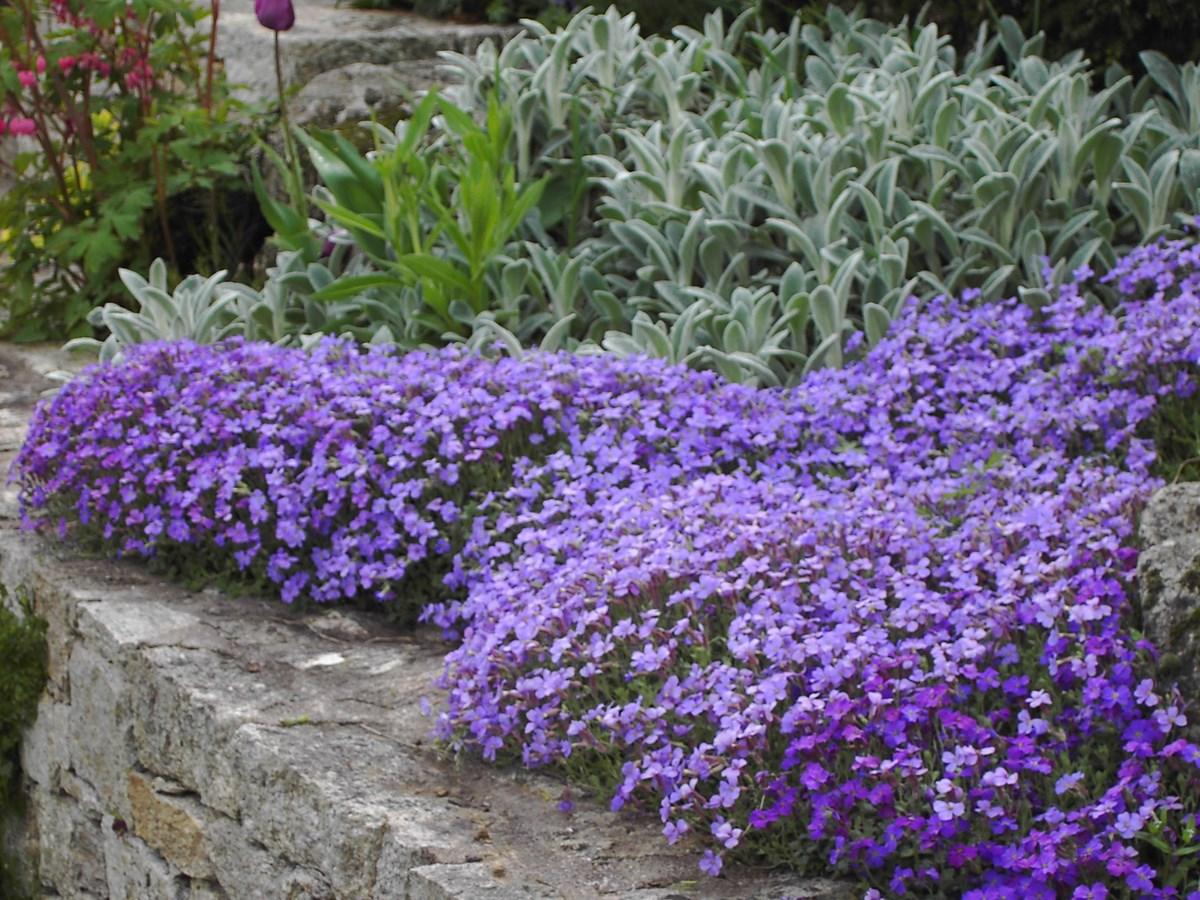 jardin-en-avril