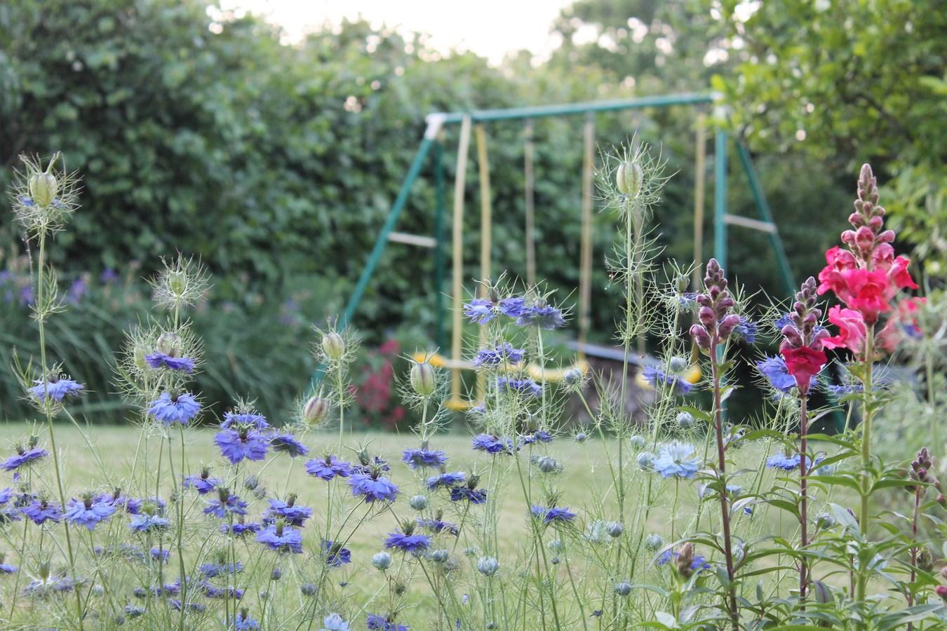 jardin-balançoire